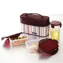 Hot Sale 3.85L Waterproof Travel Picnic Lunch bag Snack Tote Isothermic Cooler Handbag Combintion Kids Lunch Box