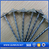 concrete nails electro galv. common nails with washer