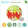 New Product Natural powder ISO22000 schisandra
