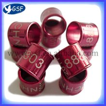 2012 hot hot hot sale top quality ring supplies pigeon ring