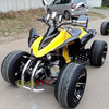 High Quality 250CC Water Cooled ATV Racing Quad Bike with LED Light