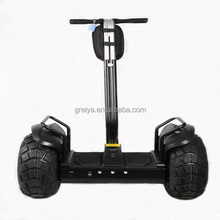 Greia CE Approved 2 Wheel Self Balancing Adults New Star Electric Scooter