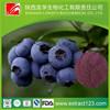 Acai Berry/ Brazilian Acai P.E.&acai extract 4:1 weight loss