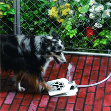 Automatic Pet Water Feeder Water Fountain Way Dog Water Drinker