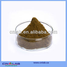 ISO&KOSHER Certificated Factory Supply Olive Leaf Powder