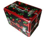 smart aluminum box cosmetic train case XB-CS593