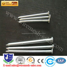 Low Price high quality common nail (factory in anping)