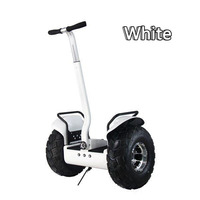 2 Wheel 2000W 19 Inch Tire 36V.15Ah Lithium battery Max Speed 20 KM/H Waterproof Self-balance Off Road Scooter OB-OR1(L3)