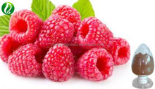 100% Natural Red Raspberry Extract Raspberry Ketone