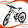 torque sensor motor ebike beach bike CE EN15194 approived