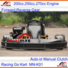 2015 latest Adult F1 Circuit Racing Go Kart 250cc EEC available