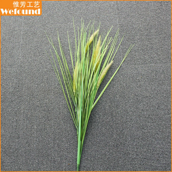рогоз трава