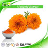Marigold Flower Extract, Tagetes Erecta Extract with Lutein and Zeaxanthin