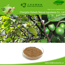 Top quality manufacture natural Pygeum africanum extract