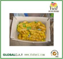 China market price for fresh ginger