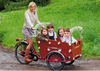 2015 hot sale Three Wheel Electric Reverse Cargo Trike