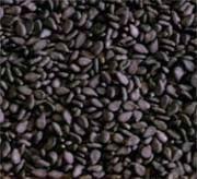 Science Black Sesame Seeds