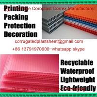 pink pp correx plastic sheet