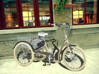 electric cargo bike tricycle 7speeds electric tricycle with 36V lithium battery 250W GB7019E
