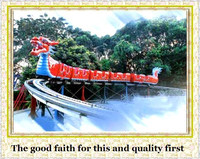 More than10 yearsexperience inkiddie ride roller coaster sliding dragon