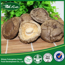 Truffles mushrooms price