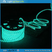 New Type Environmental Wire Frame Christmas Light Motif