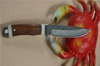 combat Knife with Buckhorn Handle FLDL-WG0015