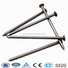 best price q195 polished common nail use in wood nail