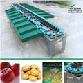automático de frutas y vegetales de clasificación de la máquina el precio de fábrica