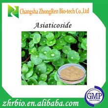 Natural Centella Asiatica Extract Powder 10%- 80% Triterpenes