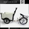 moped cargo bike Europe Hot sale BRI-C01 3 wheel cargo motorcycles