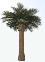 2014 Hot Sale High quality.Low price Artificial Date Palm Tree for Landscaping Decoration