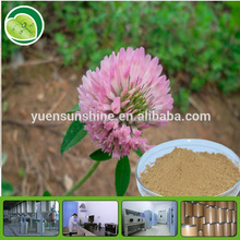 Echinacea Extract tested by HPLC&UV with free sample
