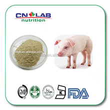 100% Pure and Natural Suis fellis pulvis, porcine bile powder, animal extract with Bulk Supply
