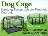 wire dog cage/best pet crates