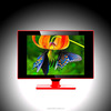 "15""/17""/19""/22""/23.6"" LED TV Price In Bangkok With Factory Direct Price"