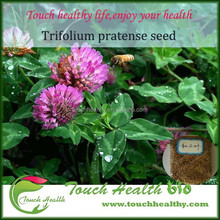 Touchhealthy supply red clover grass seeds price