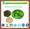GMP factory supply high quality Gynostemma Plant Extract Gypenoside