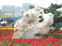 Natural Stone, Stone Garden Products, Taihu stone