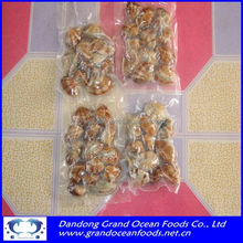 FROZEN BOILED VACUUM PACKED CLAM