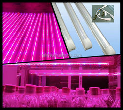 10pcs/lot 60CM 9W 48pcs Red Blue LED Flowering Hydroponics Tube Plant Grow Light zt203