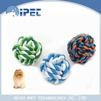 Ipet chew running tennis balls dog choice pet toy