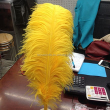 Gold Ostrich Feather Cheap Ostrich Feather Decorations