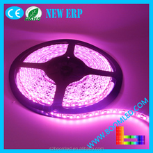 high quality good price led strip smd