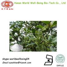 Illicium verum Extract Powder Shikimic Acid 98% /Shikimic Acid Anise Extract / Star Anise Seed Extract