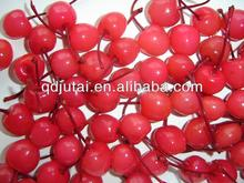 Fresh Delicious Canned Cherry in Syrup /canned fruit