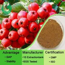Hawthorn berry extract/hawthorn flavone/hawthorn P.E