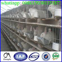 Directly factory female male pet cage rabbit cage