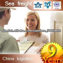 Profesional internacional naviera de China