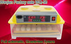 high hatch rate egg incubator used incubator family use WQ-56
